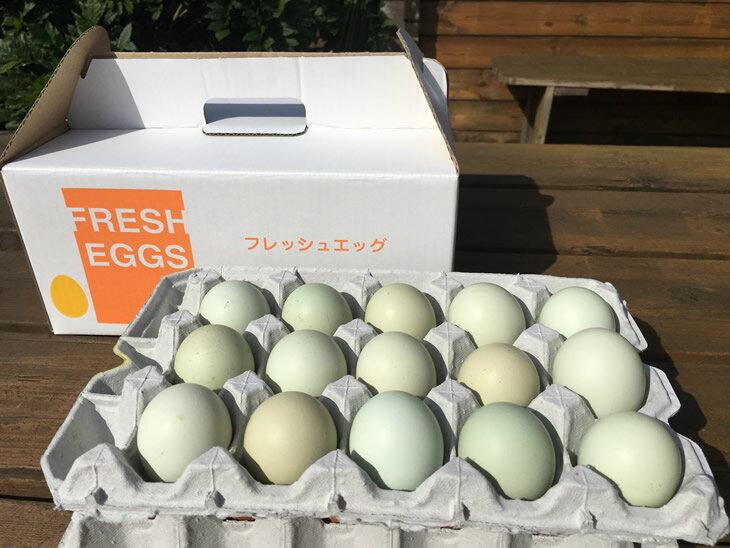 【ふるさと納税】AG02_江原ファーム アローカナの青い卵(50個)