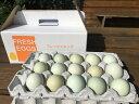 【ふるさと納税】AG01_江原ファーム アローカナの青い卵(30個) たまご/タマゴ/生みたて/新鮮/ ◆