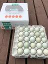 【ふるさと納税】AG02_江原ファーム アローカナの青い卵(50個) たまご/タマゴ/生みたて/新鮮/ ◆
