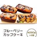 【ふるさと納税】48-4 ブルーベリーカップケーキ(280g×4個)
