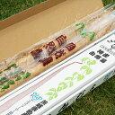 【ふるさと納税】CH-6 笠間自然薯研究会の自然薯 約1kg
