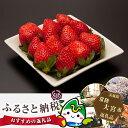 【ふるさと納税】No.138 奥久慈産いちご 厳選平詰め 約...