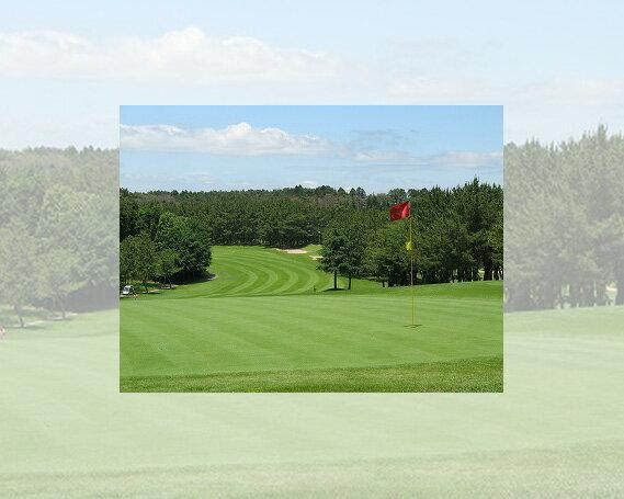 【ふるさと納税】土日祝1名ゴルフプレーフィ無料...の紹介画像2