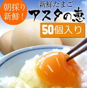 【ふるさと納税】【アスタの恵み】50個 卵1パック50個