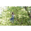 【ふるさと納税】森の空中散歩!フォレストアドベンチャー・おお...