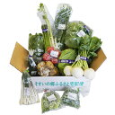 【ふるさと納税】新鮮野菜 詰合せ【1033519】