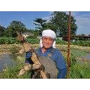 【ふるさと納税】赤川農園のレンコン箱詰め(3kg)【1098580】