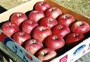 【ふるさと納税】りんご 5kg(16コ〜18コ入り 1箱)