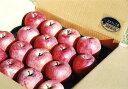 【ふるさと納税】りんご 10kg(32コ〜36コ入り 1箱)