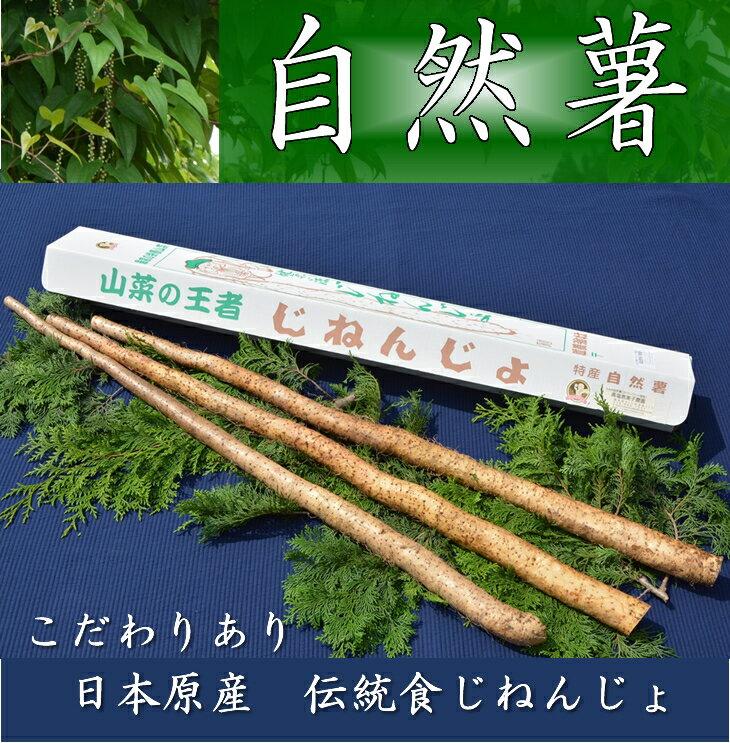 【ふるさと納税】さくらブランド認証品 えみの自然薯 2〜3本(2.3kg以上)