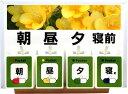 【ふるさと納税】A-183 健康ポケット(朝・昼・夕・寝前 4ポケット版)【花2】