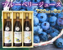 【ふるさと納税】No.041 【6本セット】40%果汁入りブ...