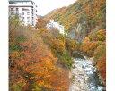 【ふるさと納税】No.056 老神温泉で使える旅館「宿泊利用補助券」B
