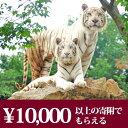 【ふるさと納税】群馬サファリパーク利用券(3割相当額)...