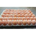 【ふるさと納税】岩田のおいしい卵 小玉49個+破卵保障5個入...
