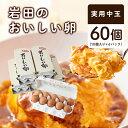 【ふるさと納税】岩田のおいしい卵 実用中玉60個 (10個入り×6パック)【1081154】