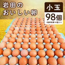 【ふるさと納税】岩田のおいしい卵 小玉98個+破卵保障10個入り【1092662】