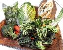 【ふるさと納税】No.039 野菜詰め合わせセット