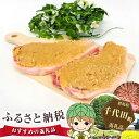 【ふるさと納税】No.040 上州麦豚味噌漬け(箱入り) 約...
