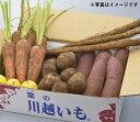 【ふるさと納税】農家のうどん 〜自家採種・無肥料自然栽培三芳町産小麦100%〜