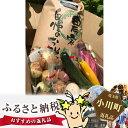 【ふるさと納税】No.020 有機農家の季節の野菜と白米10...