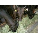 【ふるさと納税】上里町産【彩さい牛】サーロイン肉250g(しゃぶしゃぶ用)【1098346】