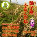 【ふるさと納税】【3ヶ月定期便】潮風香る銚子産ふさこがね 精...