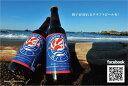 【ふるさと納税】銚子のクラフトビール 銚子エール(5本セット)