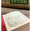 お買得 江戸前(千葉県産)全形焼海苔【青混】10枚入り×5袋