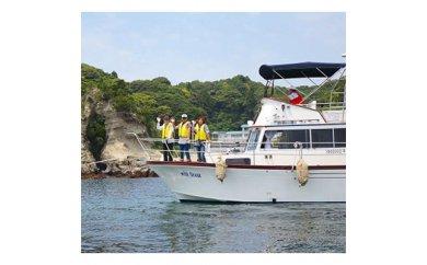 【ふるさと納税】勝浦湾内クルージング3名様の乗船券