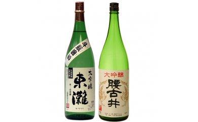 【ふるさと納税】勝浦の地酒 「大吟醸酒1.8L入り 2本セット」