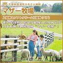 【ふるさと納税】◇マザー牧場 入場券&ソフトクリーム引換券(ペア)