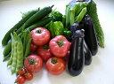 【ふるさと納税】A10-3 栄町産新鮮・季節の野菜詰合せ