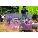 【ふるさと納税】【限定1組】少人数で楽しむ農業体験【 千葉県 多古町 】