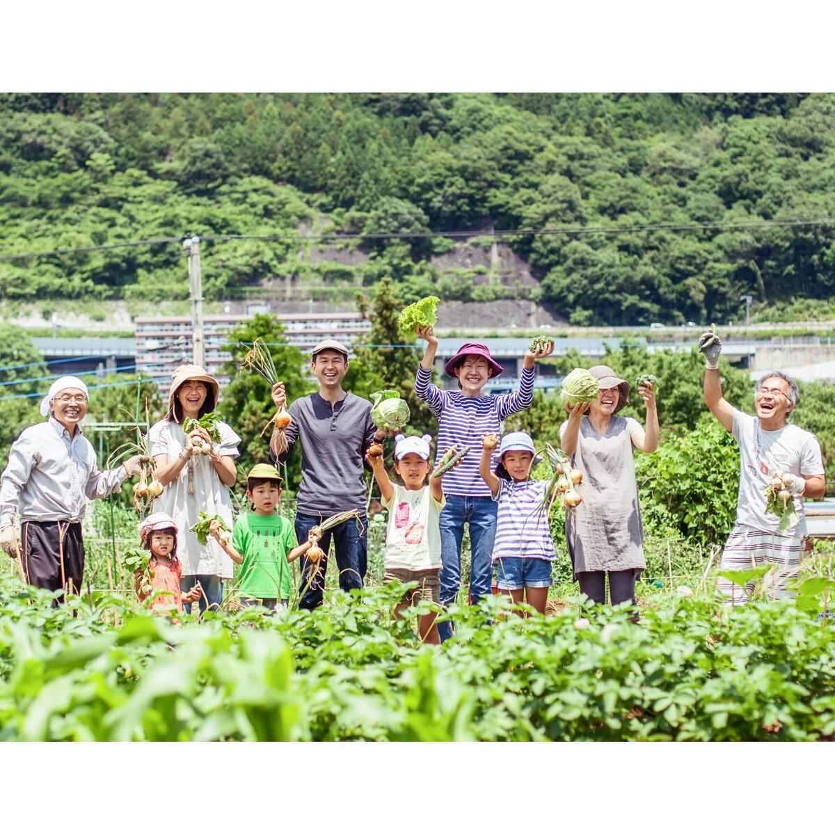 【ふるさと納税】藤野里山体験ツアーペアチケット☆...の商品画像