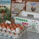 【ふるさと納税】鶏卵 プリマスロック(交配種)の卵 化粧箱入...