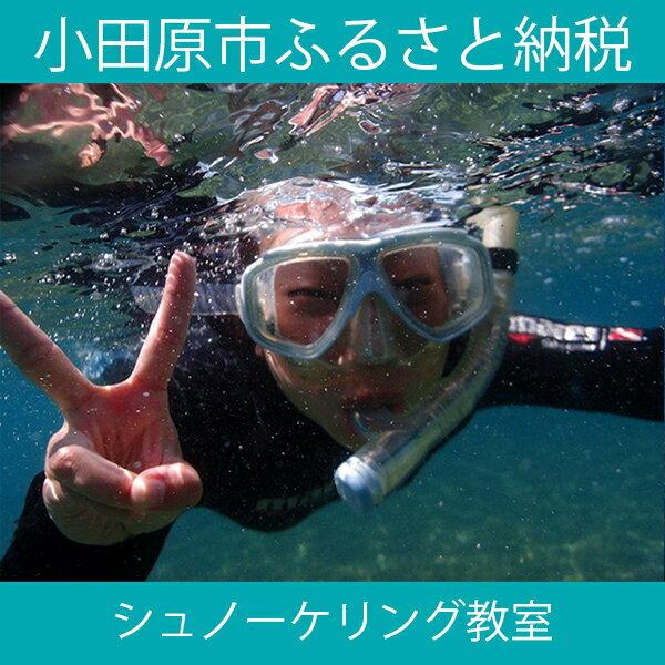 【ふるさと納税】海の中をのぞいてみよう!シュノーケリング教室