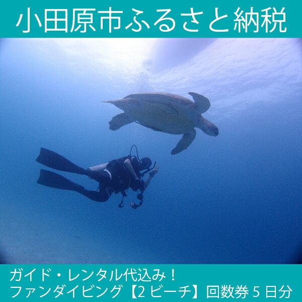 【ふるさと納税】ガイド・レンタル代込み!ファンダイビング【2ビーチ】回数券5日分