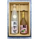 ショッピングふるさと納税 年内 【ふるさと納税】あやせ本醸造・梅酒セット 【日本酒】