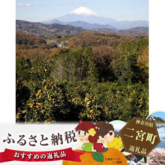 【ふるさと納税】No.034 湘南「みかんの木パートナーシップ」プログラム参加チケット