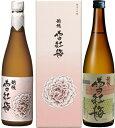 【ふるさと納税】001-021E4 越後雪紅梅 純米大吟醸原酒・越後雪紅梅 (普通)