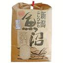 【ふるさと納税】1-350 新潟県魚沼産(長岡川口地域)コシヒカリ5kg