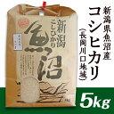 【ふるさと納税】1-350 新潟県魚沼産(長岡川口地域)コシ
