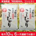 【ふるさと納税】12-005 【6ヶ月連続お届け】新潟県長岡産特別栽培米コシヒカリ10kg