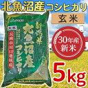 【ふるさと納税】205-1【玄米】北魚沼産コシヒカリ5kg(...