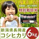【ふるさと納税】1-426【H30年産】新潟県長岡産コシヒカ...
