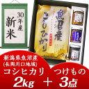 【ふるさと納税】1H-066【H30年産】新潟県魚沼産コシヒ...