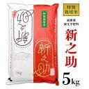 【ふるさと納税】米 新之助 5kg 白米 B7-05新潟県長岡産新之助5kg(特別栽培米)