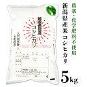 【ふるさと納税】1-448新潟県産米コシヒカリ5kg(H30...