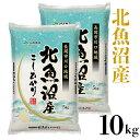 【ふるさと納税】米 10kg 白米 コシヒカリ 魚沼 令和2...